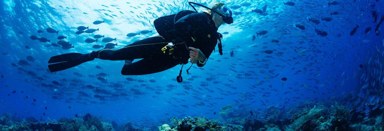 Mejores lugares de submarinismo en Filipinas
