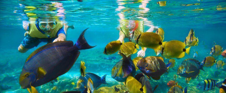 Mejores puntos donde hacer Snorkeling en Filipinas