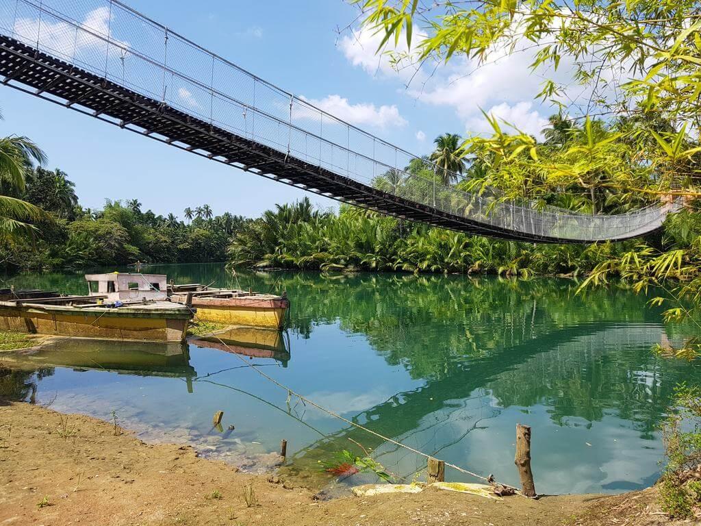 Que ver, hacer y visitar en Loboc River Cruise
